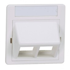50mm x 50mm adapter with sloped insert for two NetKey™ modules, arctic white